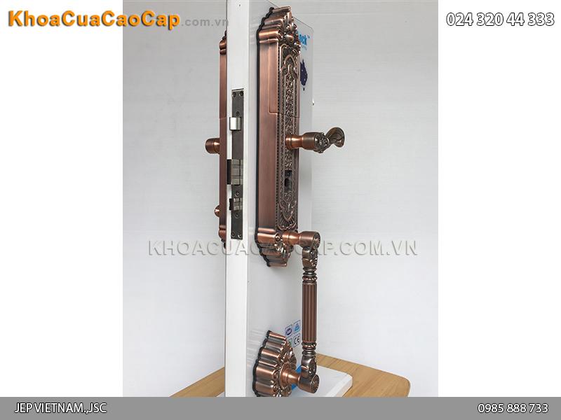 Khóa cửa vân tay cao cấp FP8080 - ảnh 1